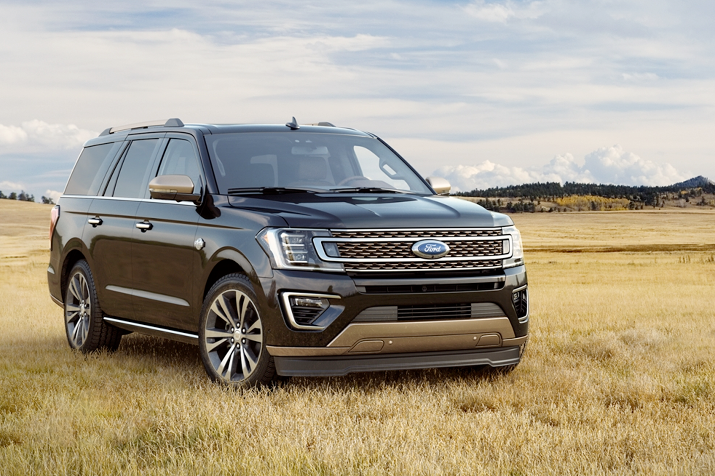 2020 Ford Expedition - Looks Meet Comfort
